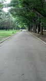 2012-08-11_10-06-57_745.jpg