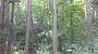 2012-09-22_10-14-11_345.jpg