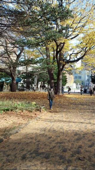 2012-11-10_10-33-26_244-1.jpg